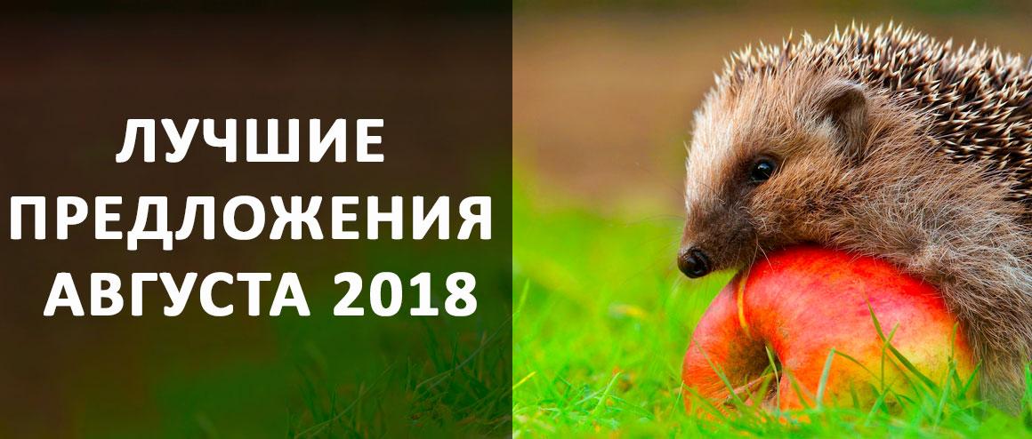 Лучшие Предложения Августа 2018!